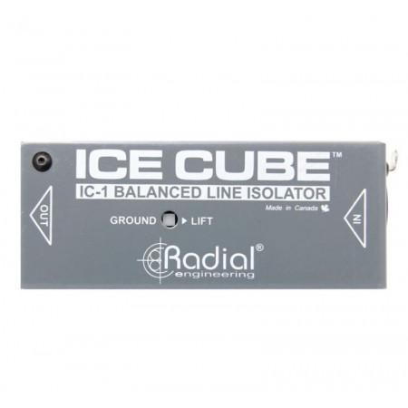 icecube-top-lrg733919438-450x450.jpg